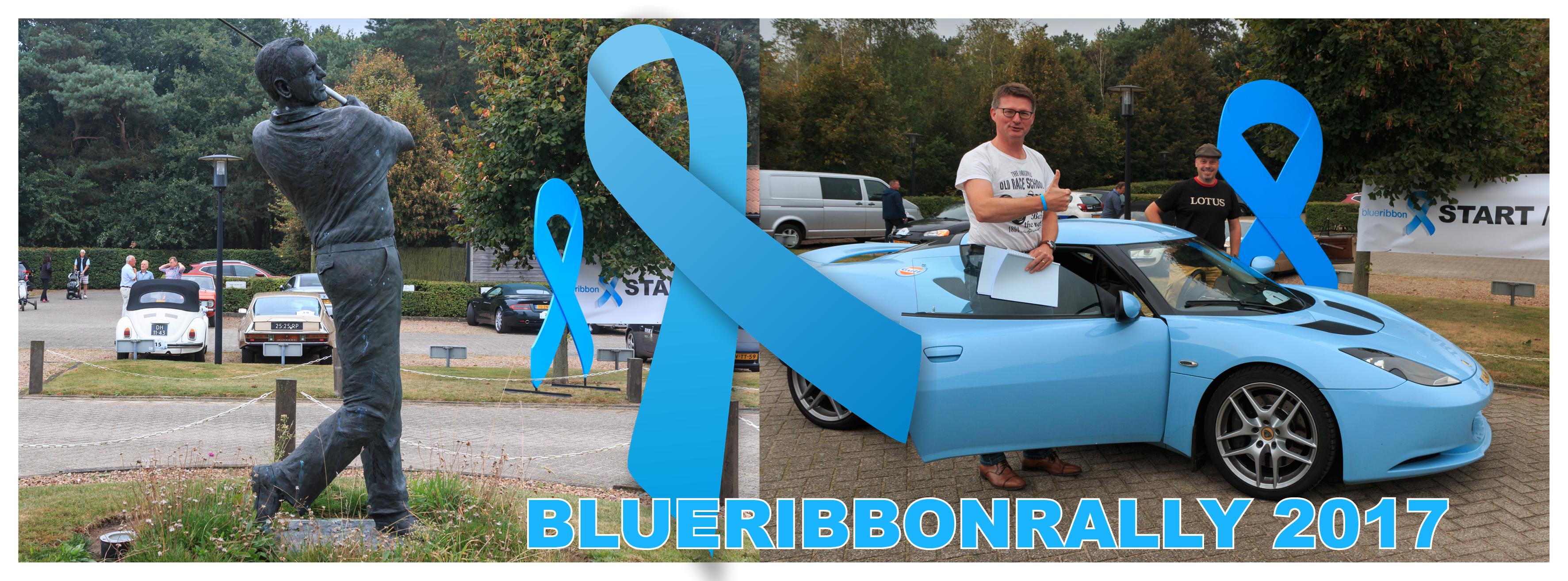 blue ribbon 2017 header